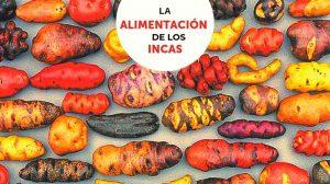 La alimentación de los incas